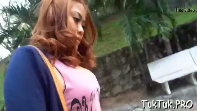 Thai beauty picked up for sex